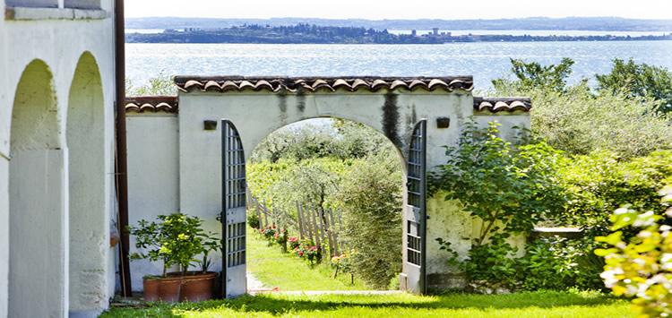 Azienda Monte Cigogna
