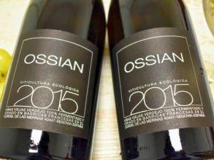 Ossian - Verdejo 2015 Ossian Bio
