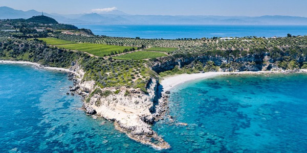 Weingarten von Planeta auf Sizilien