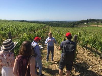 Marco Ricasoli mit Besuchern im Weinberg
