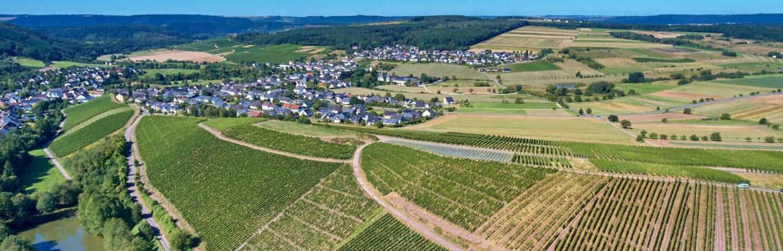 Wein aus Deutschland bei VIPINO