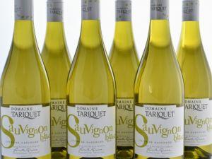 Domaine Tariquet - 6er-Sparpaket Sauvignon Blanc 2019