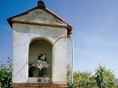 Sant'Antonio - Schutzpatron des Weingutes Tenuta Sant'Antonio