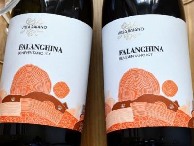 Falanghina del Beneventano 2018