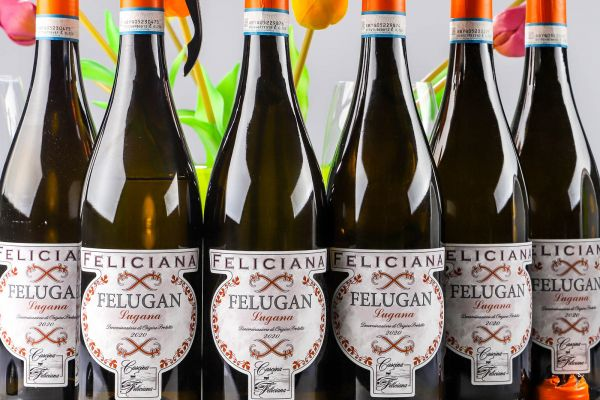 Feliciana - 6er-Sparpaket Lugana 2020 Felugan