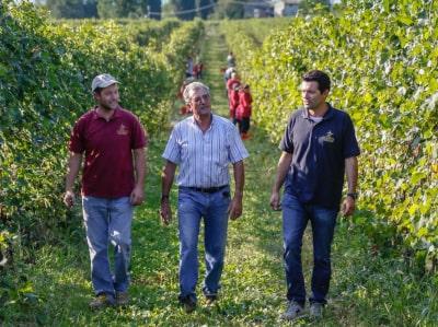 Paolo, Valerio und Fabio Zenato von Le Morette