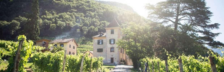 Weingut Kornell in Südtirol