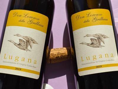 Don Lorenzo della Grillaia - Lugana 2019 Don Lorenzo