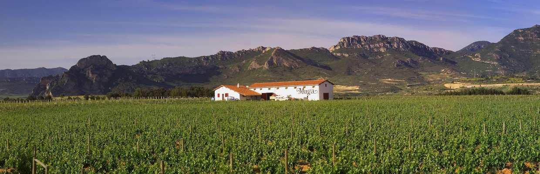 Bodegas Muga in der Rioja