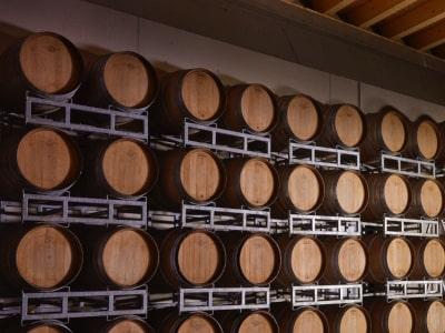 Weinlager für Franciacorta