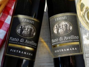 I Favati - Fiano di Avellino 2019 Pietramara