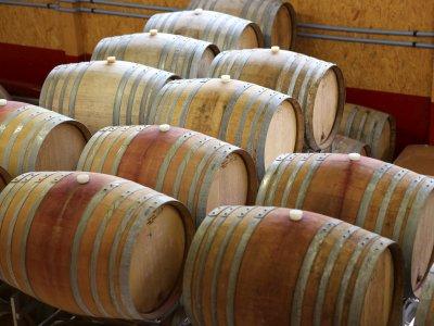 Holzfässer für die Weinreife