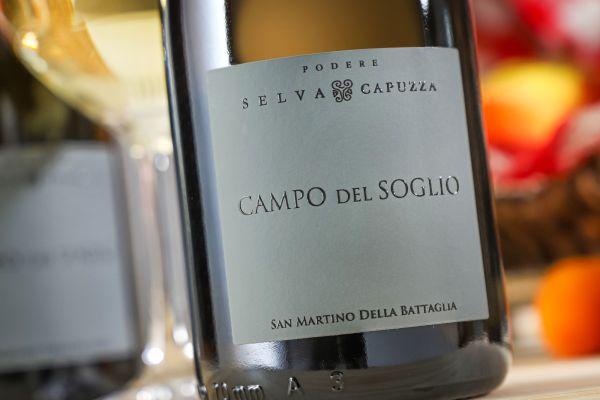 Selva Capuzza - San Martino della Battaglia 2020 Campo del Soglio