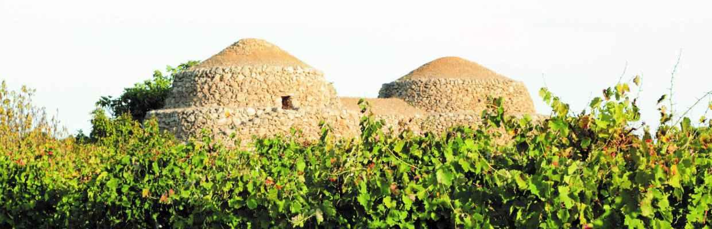 Typische Trulli-Häuser in Apulien
