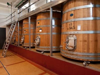 Große Holzfässer für Rotwein