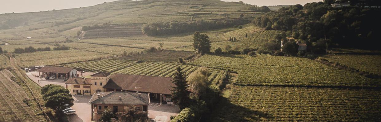 Weingut Graziano Pra