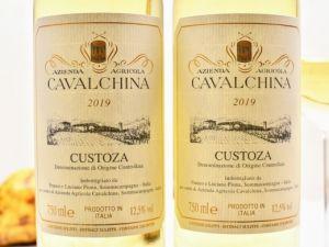 Cavalchina - Bianco di Custoza 2019