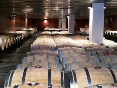 Barricas für charaktervolle Rotweine