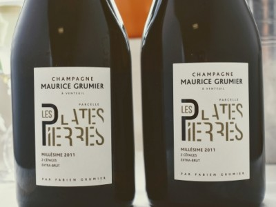 Champagne Les Plates Pierre 2011 Extra Brut