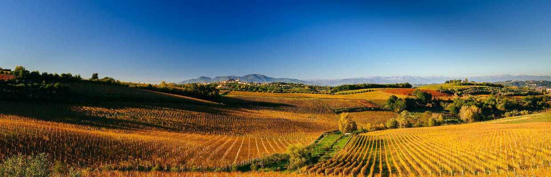La Spinetta Piemont