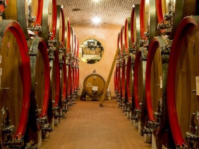 Fässer mit Tedeschi Wein