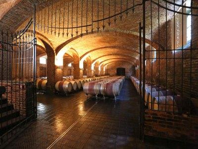 Fasskeller in der Tenuta Monsordo Bernardina