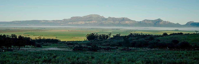 Testalonga Südafrika