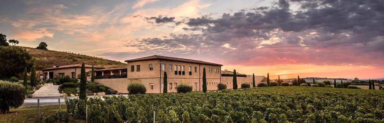 Weingut Monteverro Toskana
