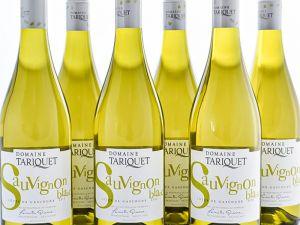 Domaine Tariquet - 6er-Sparpaket Sauvignon Blanc 2020