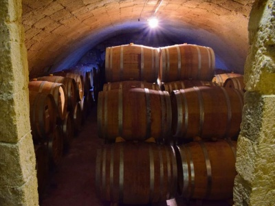Fasskeller von Gianfranco Fino mit Primitivo Wein