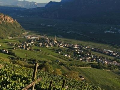 Blick aufs Weindorf Terlan mit Cantina Terlan