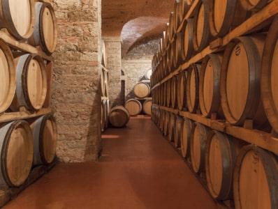 Barrique-Fässer bei Castello di Bolgheri