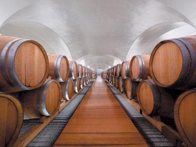 Im Gewölbekeller des Weingutes