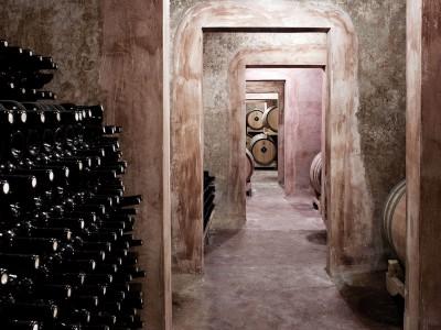 Primitivo Wein im Keller von Schola Sarmenti