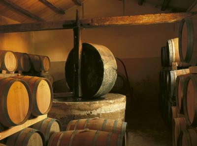 Keller der Tenuta Sette Ponti bei Arezzo