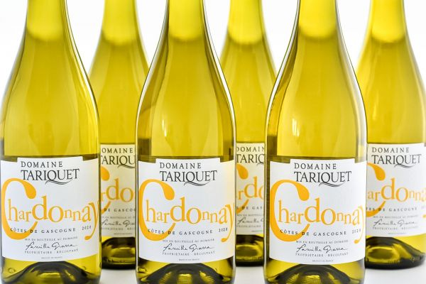 Domaine Tariquet - 6er-Sparpaket Chardonnay 2020