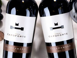 Capoforte - Negroamaro Salento 2017