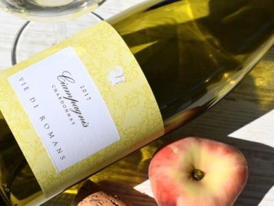 Chardonnay Ciampagnis 2017