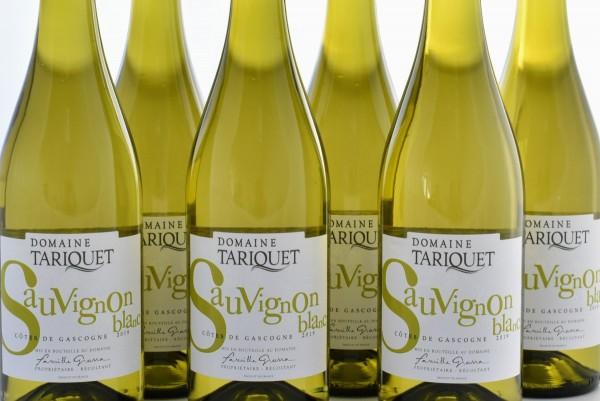 Tariquet - 2019er Sauvignon Blanc im 6er-Sparpaket