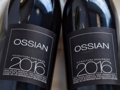 Verdejo 2016 Ossian