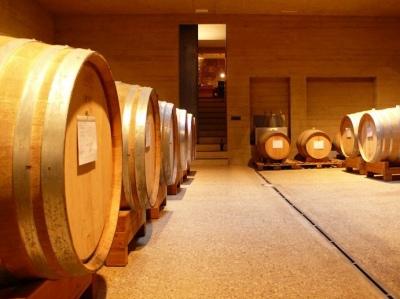 im Keller des Weinguts
