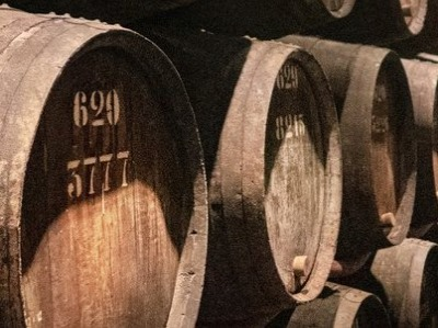 Fasskeller von Groszer Wein