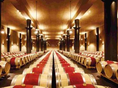 Fasskeller des Weinguts